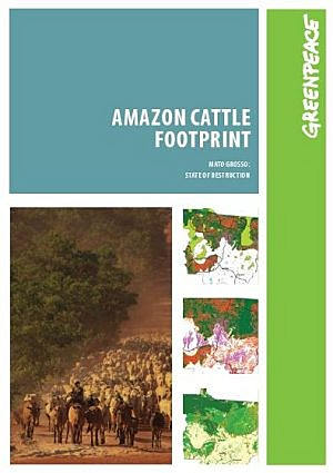 Greenpeace demuestra cómo la ganadería es la primera causa de deforestación en la amazonía