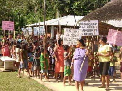 Perú: Asháninkas luchan por sobrevivir en medio de violencia y narcotráfico